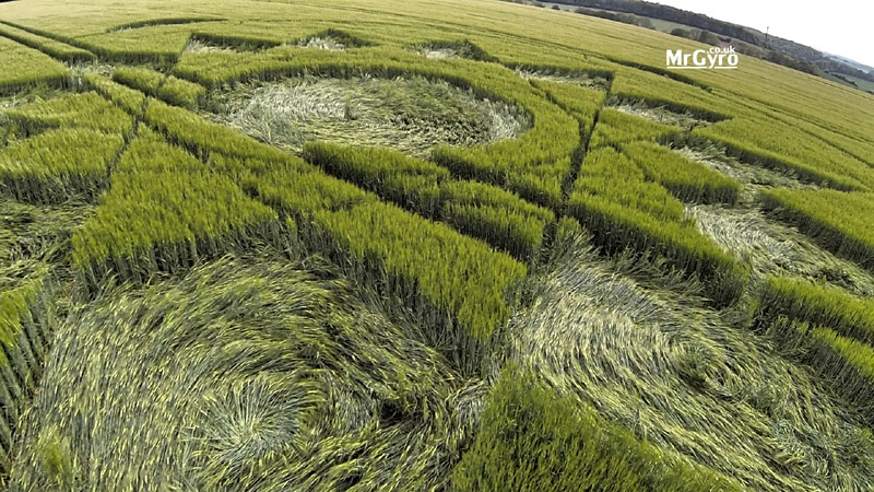 Manton Drove, Nr Marlborough, Wiltshire. 24 May 2015. Wheat. c90ft diameter, A central flattened circle surrounded by a tracery of fine lines depicting triangles with an outer set of 13 lozenge shapes, the tips touching a circular line; all within an outer circle with four outer circles bisected by the outer circular line.