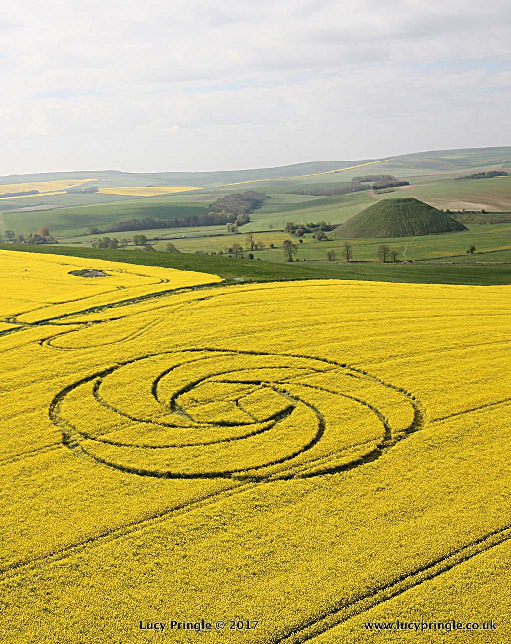 Crop Circles 2017 photography Lucy Pringle